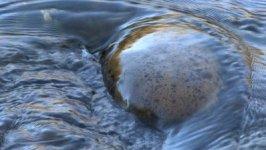 smoothrock